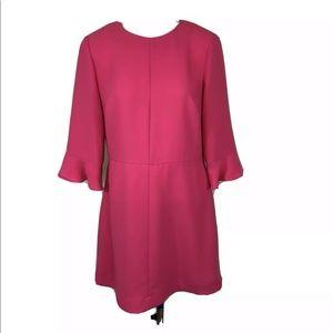 Banana Republic Bright Pink Dress Ruffle Sleeves
